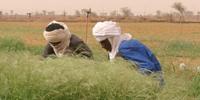 Uranium-rich Niger faces political uncertainty