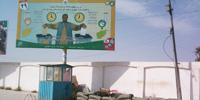 Afghanistan news hunt results