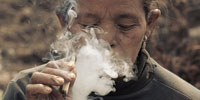 Smoking rates remain stubbornly high around the globe